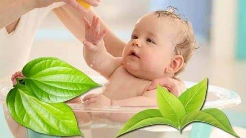 Nếu da của trẻ bình thường,khỏe mạnh thì có nên áp dụng lá tắm hay không ?